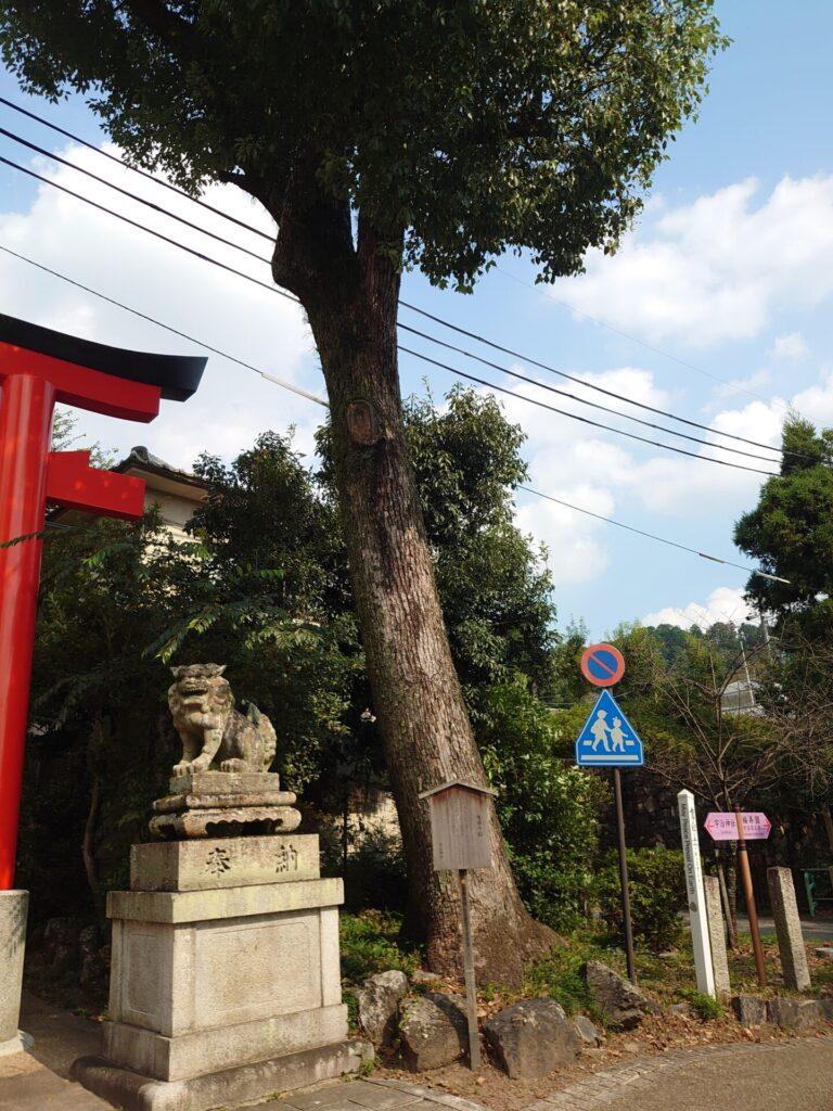 宇治神社 鳥居